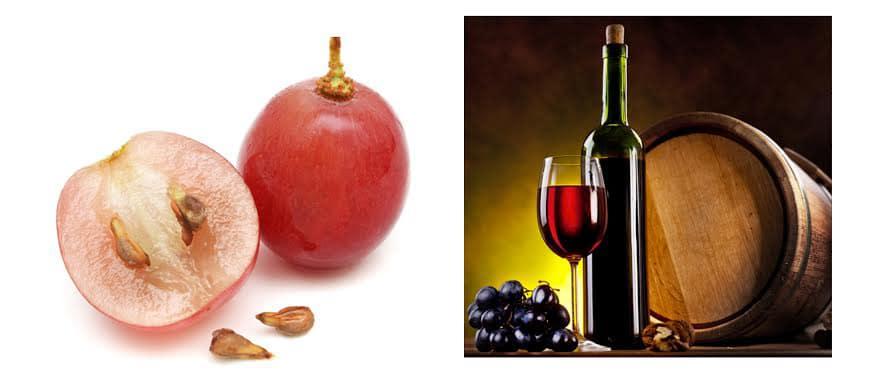 สารสกัดจากผลองุ่นแดงคุณภาพดีจากฝรั่งเศส – resveratrol