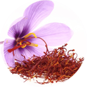 หญ้าฝรั่น – saffron